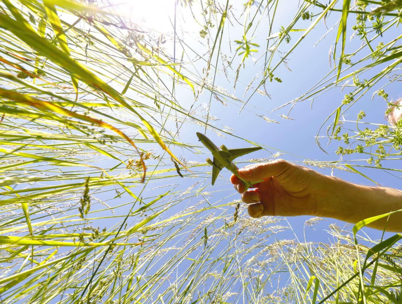 Aviação sustentável